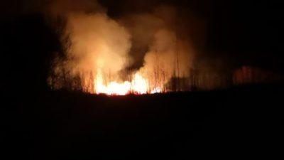 Δήμος Ηράκλειας : Έκτακτο -Σε εξέλιξη μεγάλη φωτιά κοντά στα Χρυσοχώραφα ( φωτο )