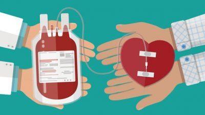 Δήμος Βισαλτίας : Στους 54 δήμους πανελλαδικά που διαθέτουν χώρο για αιμοδοσία