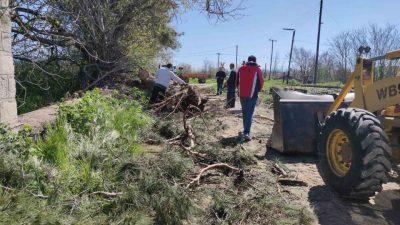 Σέρρες : Πτώση δέντρου στις γραμμές του τραίνου