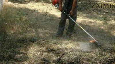 Δήμος Αμφίπολης : Ανακοίνωση για τον καθαρισμό των οικοπέδων