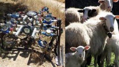 Απίστευτο κι όμως ελληνικό: Έκλεβε υδρομετρητές και σωλήνες για να φτιάχνει κουδούνια για πρόβατα!