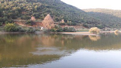 ΠΕ Σερρών : Στην περιοχή Βισαλτίας οι αεροψεκασμοί για τα κουνούπια