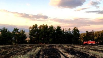 Π.Ε Σερρών : 10 στρέμματα δάσους έκαψε η φωτιά στην Κρηνίδα