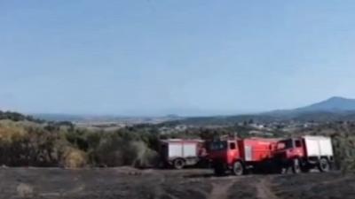 Δήμος Ηράκλειας : Υπό έλεγχο η φωτιά στην Τριάδα