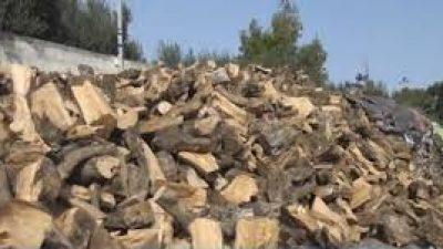 Δήμος Σιντικής : Ξεκινησε η διανομή καυσόξυλων σε Ροδόπολη – Οδηγήτρια