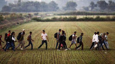 Έβρος: Δεκάδες λαθραίοι μετανάστες κυκλοφορούν ανενόχλητοι