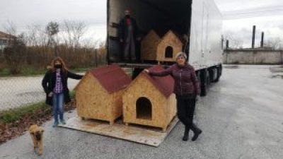 Δήμος Σιντικής :  Προμήθεια ξύλινων σπιτιών για τα αδέσποτα ζώα συντροφιάς