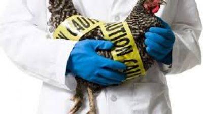 Π.Ε Σερρών : Eνημέρωση πολιτών για τη γρίπη των  πτηνών