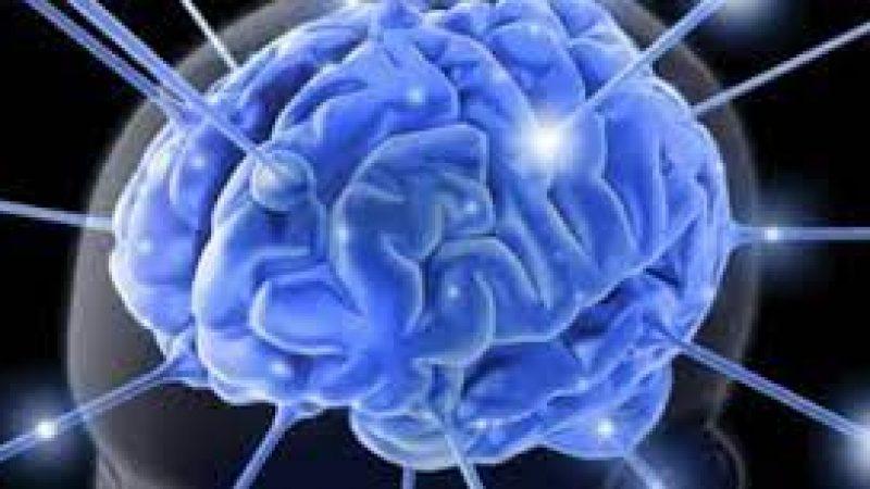 Π.Ε Σερρών : Ανακοίνωση από τη Διεύθυνση Κτηνιατρικής σχετικά με περιστατικά κροτωνογενούς εγκεφαλίτιδας
