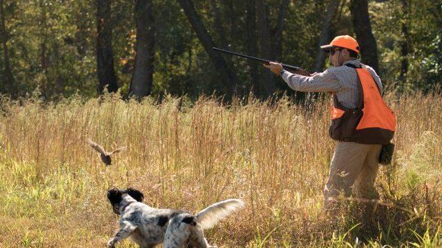 hunter-2-640x400-1.jpg