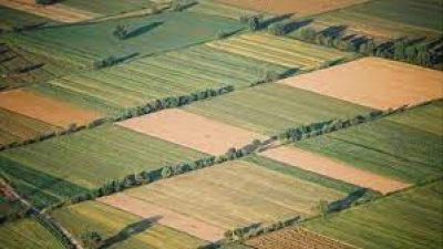 Δήμος Βισαλτίας : Διαγωνισμός εκμίσθωσης για  σχολικά και δημοτικά αγροτεμάχια